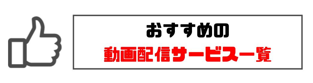 netflixプレミアム_動画配信サービスおすすめ